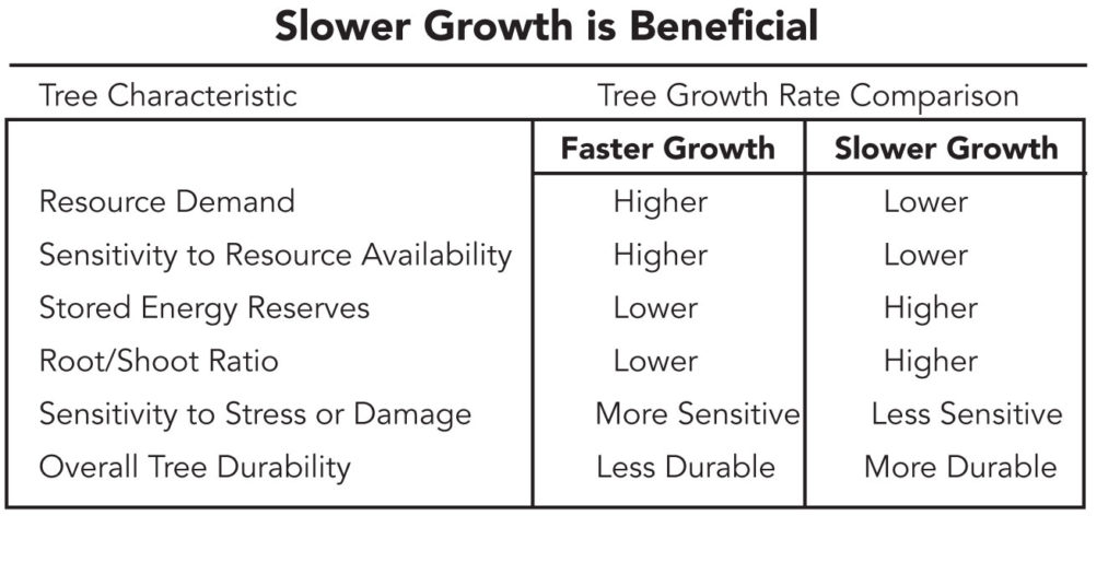 Slower growth is beneficial