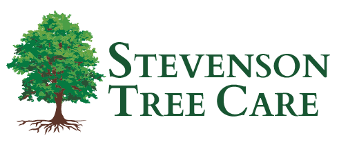 Stevenson Tree Care